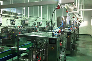 Liquid and Paste Pouch Filling Sealing Machine